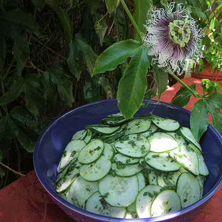 Simple Cucumber Salad with Thyme and Chives